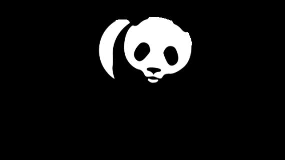 Wild at Home company logo