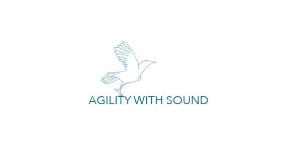 Agility with Sound logo in teal on a white background. The logo includes an illustrated outline of a bird.