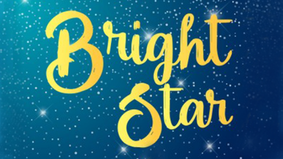 "Title of book ""Bright star"" on starry night background"